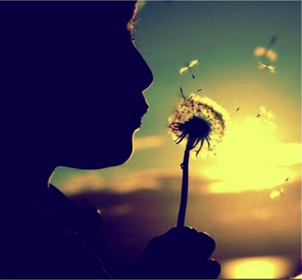 Gli auguri dell'Innocenza