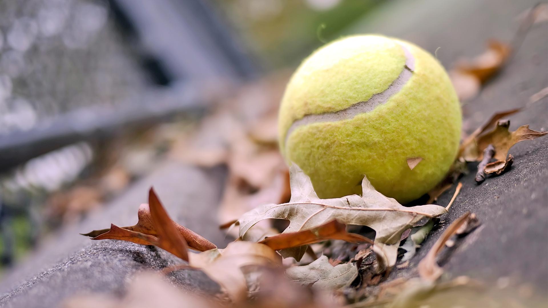 Dubai Free Tennis Championship