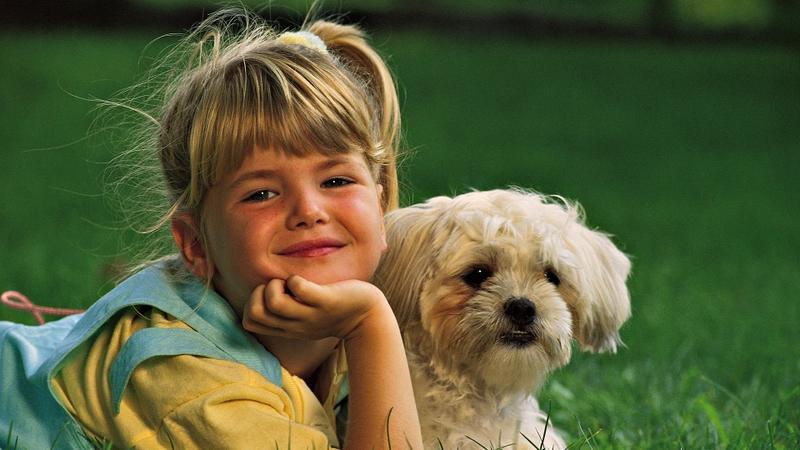Perché il cane è il migliore amico del…bambino